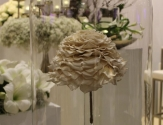 Doll's Blumen