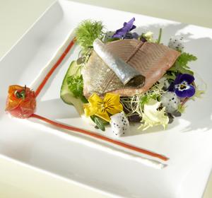 Catering Design